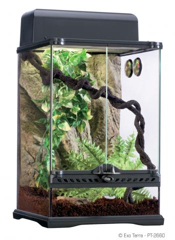 Exo Terra Small Rainforest Habitat Kit