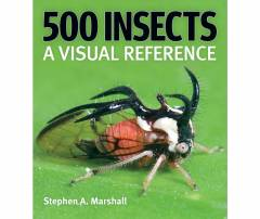 500 Insects - A Visual Reference