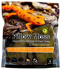 Galapagos Pillow Moss 8 quarts