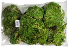 Galapagos Royal Pillow Moss 8 quart