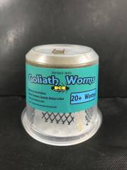 Goliath Worm Culture shipped w/ reptile (aka horned worms)