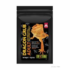 Exo Terra Dragon Grub Adult 4.4oz