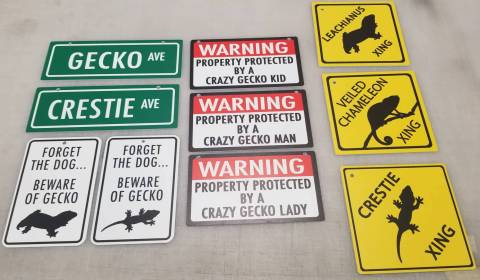 Warning - House Protected by Crazy Gecko Man Sign