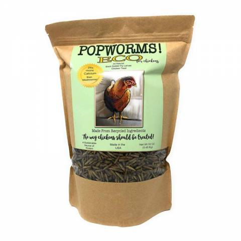 PopWorms (freeze dried black soldier fly larvae)