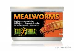 Exo Terra Canned Mealworms 1.2oz