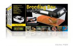 Exo Terra Medium Breeding Box