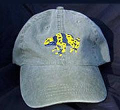 Bumble Bee Arrow Frog Hat