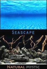 "Seascape / Natural Mystic Background 12"" High"