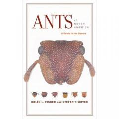 Ants of North America- a Guide to the Genera