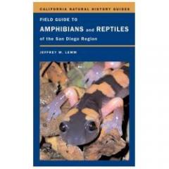 Field Guide to Amphibians & Reptiles of San Diego