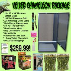 Veiled Chameleon Package