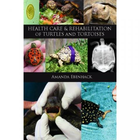 Health Care & Rehabilitation of Turtle & Tortoises