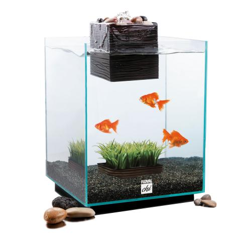 5 gallon fish tank 95 aqua brite 5 gallon fish tank 2017 for 5 gallon fish tanks