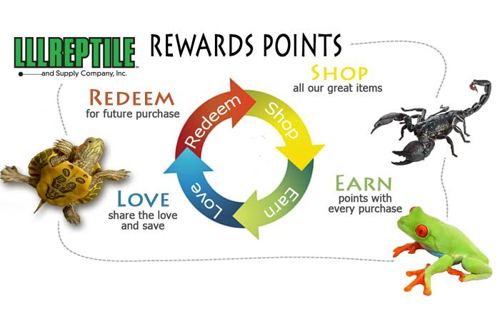 LLLReptile Rewards: Shop - Earn - Love - Redeem