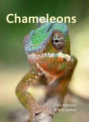 Chameleons - Covers 192 Species