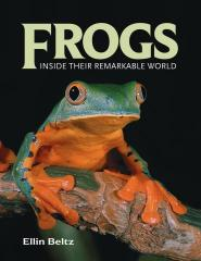 Frogs Inside Their Remarkable World