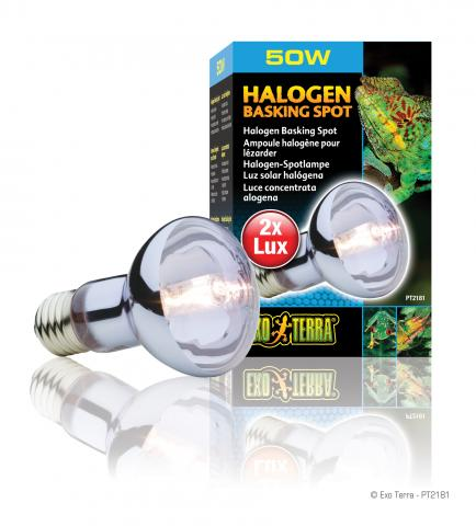 exo terra 50 watt sun glo halogen bulb. Black Bedroom Furniture Sets. Home Design Ideas