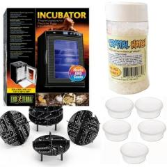 SPECIAL- Exo Terra Reptile Incubator, Crystal Hatch, Egg Incubation Trays & Deli Cups!