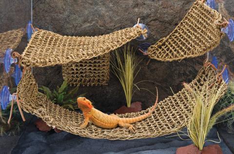the penn plax natural lizard lounger provides a  fortable climbing and resting surface for your pet reptiles to enjoy  made from durable seagrass fibers     penn plax large corner lizard lounger for sale  rh   lllreptile
