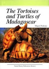 Tortoises & Turtles of Madagascar