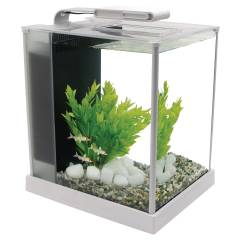 Fluval Spec III Aquarium 2.6 Gallon White