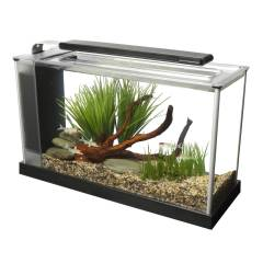 Fluval Spec V Aquarium 5 Gallon Black