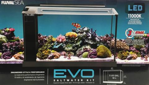 Fluval evo v saltwater aquarium kit 5 gallon for sale for Saltwater fish tank kit