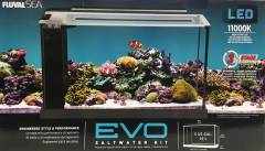 Fluval Evo V Saltwater Aquarium Kit 5 Gallon