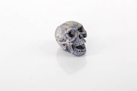 BioBubble Origins Human Skull Small