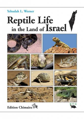 Reptile Life in the Land of Isreal