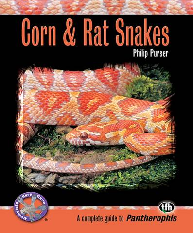 Corn and Rat Snakes
