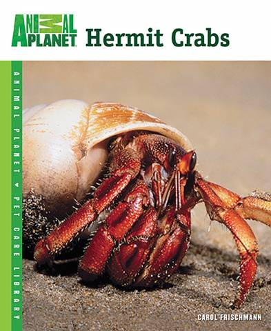 Animal Planet Hermit Crabs