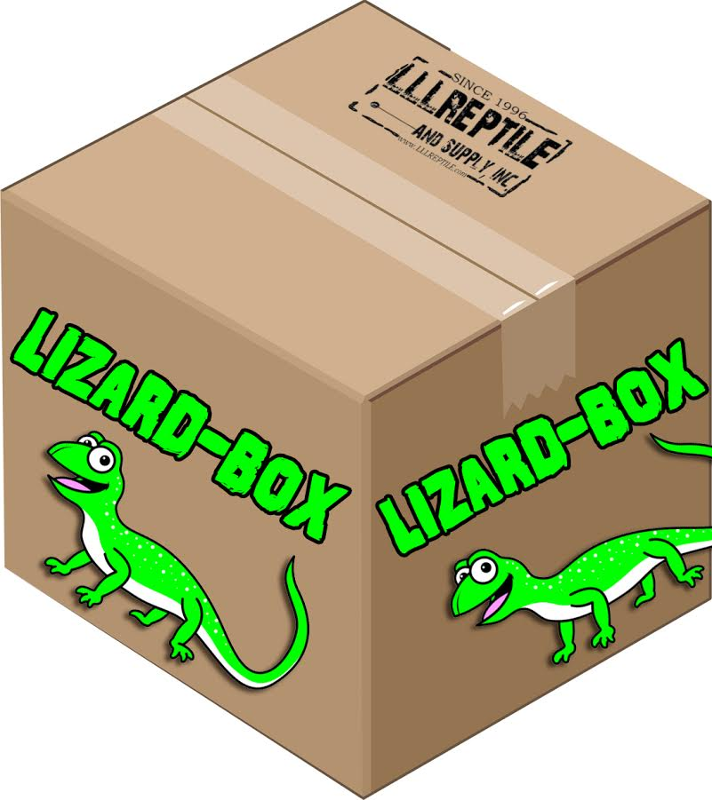Lizard Supply Box 2-Go !