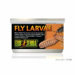 Exo Terra Canned Black Soldier Fly Larvae 1.2oz