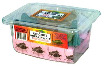 Cricket Breeding Kit