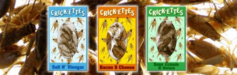 Crick-Ettes- Freeze Dried Crickets