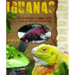 Pictorial Guide to Iguanas of the World