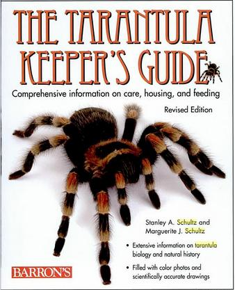 Tarantula Keepers Guide